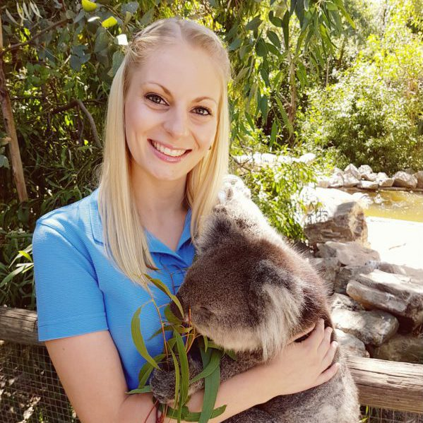 Cuddle a Koala and Historic Hahndorf Luxury Day Tours